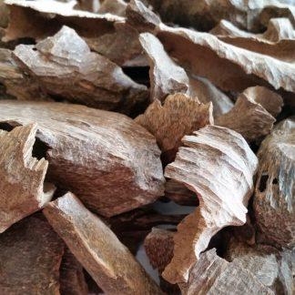 Burmese angles manipuri agallocha