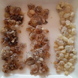 Sacred Frankincense sample pack